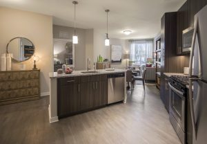 Kitchen High-end Finishes